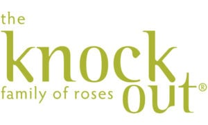 Go to the Knock Out® Roses Website