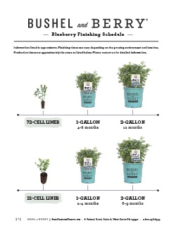 Open the Bushel and Berry Blueberry Finishing Schedule PDF