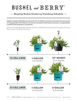 Open the Bushel and Berry Hanging Basket Blueberry Finishing Schedule PDF