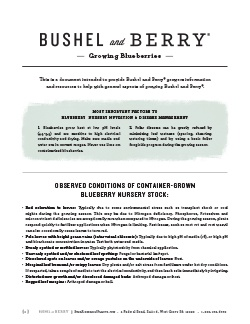 Open the Bushel and Berry Growing Blueberries Plants PDF