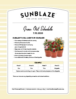 Go to the Sunblaze® Grow Out Schedule