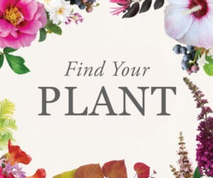 Find your plant