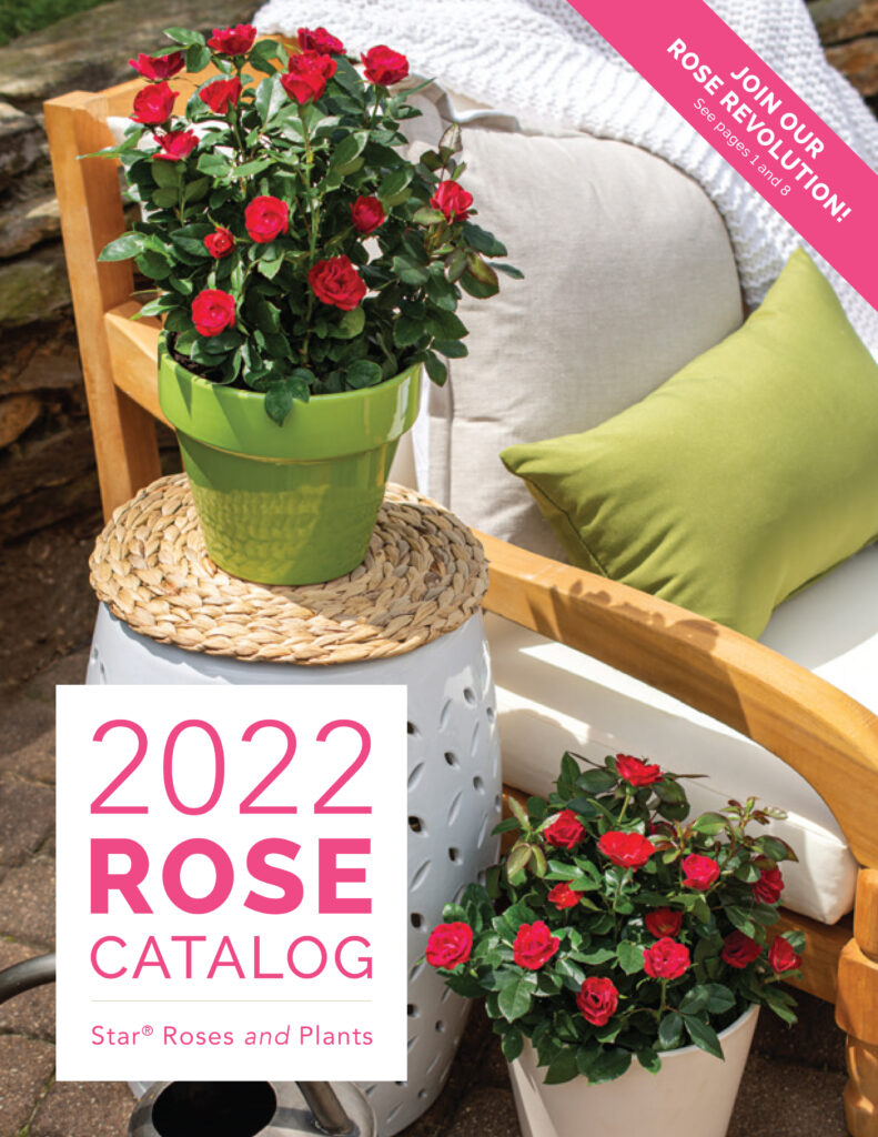 Open the 2022 Rose Catalog