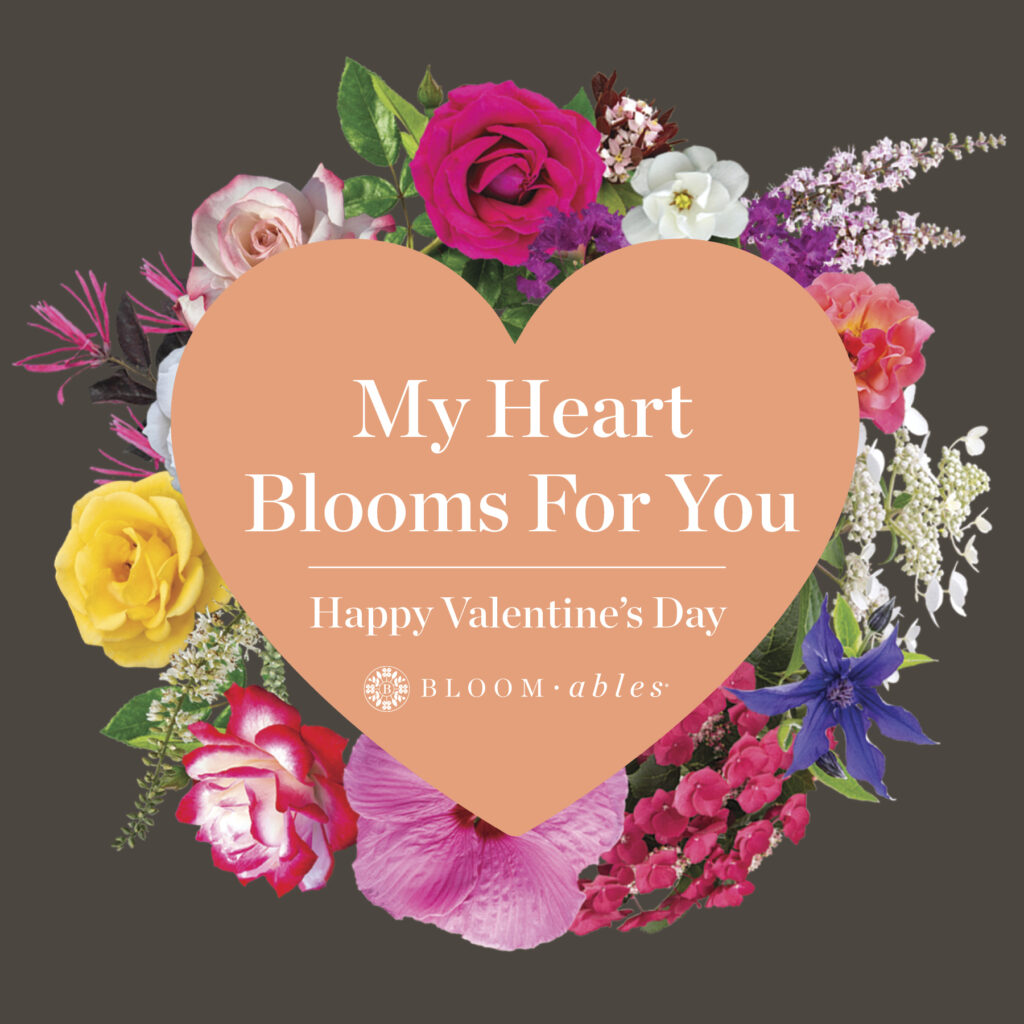 Open My Heart Blooms For You Valentine's Post for Instagram