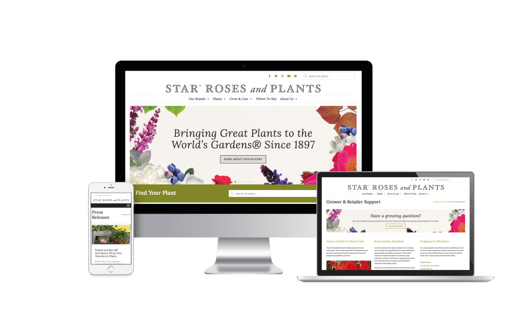 Image of Star Roses and Plants updated website on a mobile device, desktop computer and laptop computer